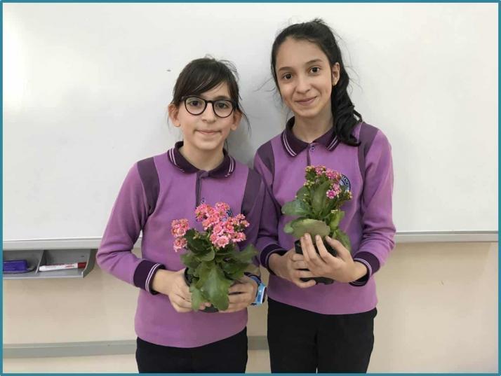 Asit yağmurlarının bitkilere etkisi Tübitak 4006 Bilim Fuarı Projesi